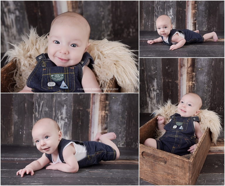 Colt 4 1 2 Months Old Hammond La Baby Photographer Baton Rouge Newborn Baby Photographer Cherilyn Haines Photography